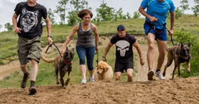Hard Dog Race 1