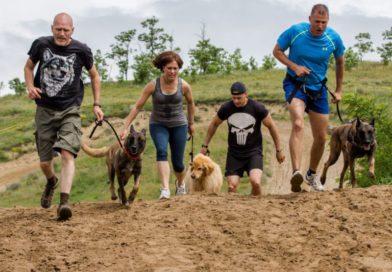 Hard Dog Race   2017. június 03.