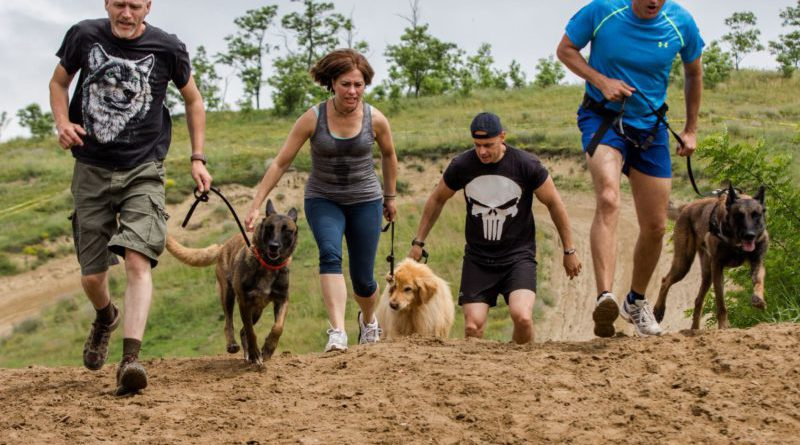 Hard Dog Race 1
