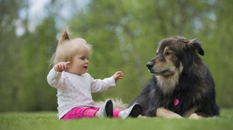 Kutyus és gyerek