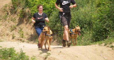 Hard Dog Race – új sport van születőben?