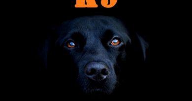 A K9 kutya – Tudod honnan ered?