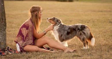 Mennyire tudatos kutyatartók a magyarok?