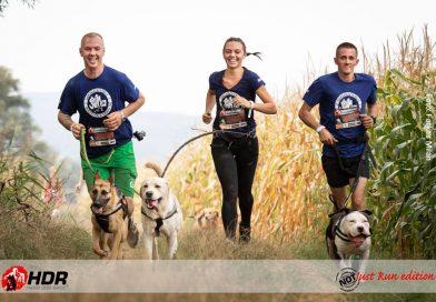 Meglepő futammal indítja az évet a Hard Dog Race