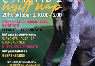 Őszi Nyílt nap a HEROSZ Budapesti Állatotthonban